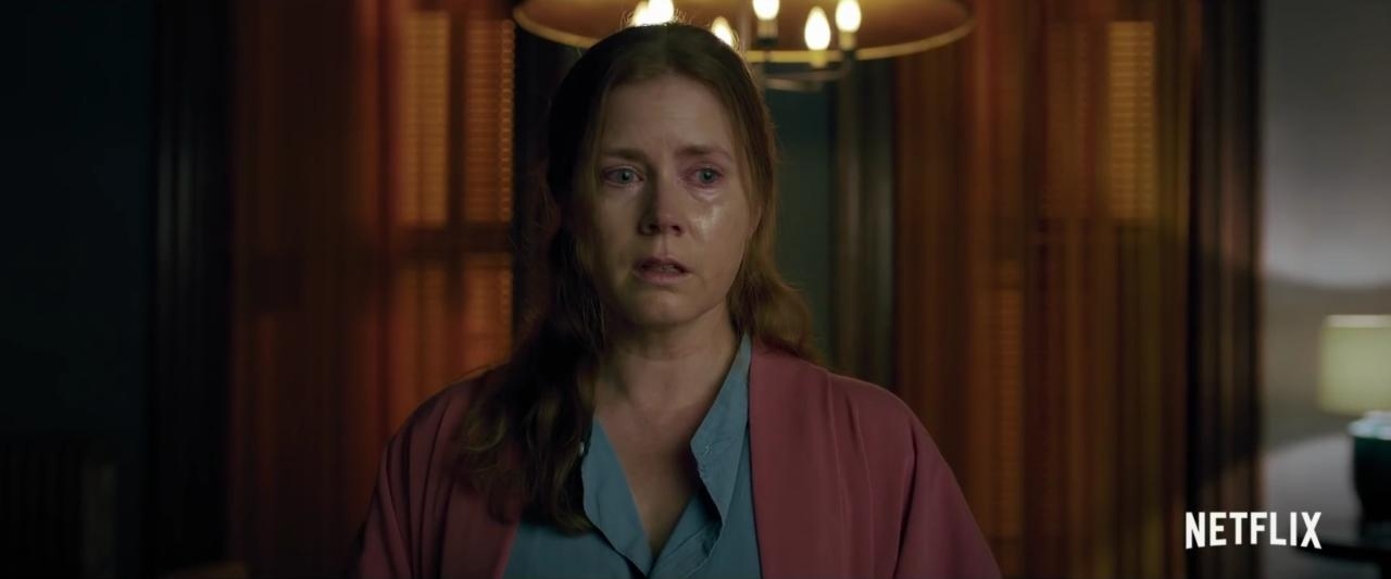 The Woman in the Window: un thriller hitchcockiano… muy a medio gas
