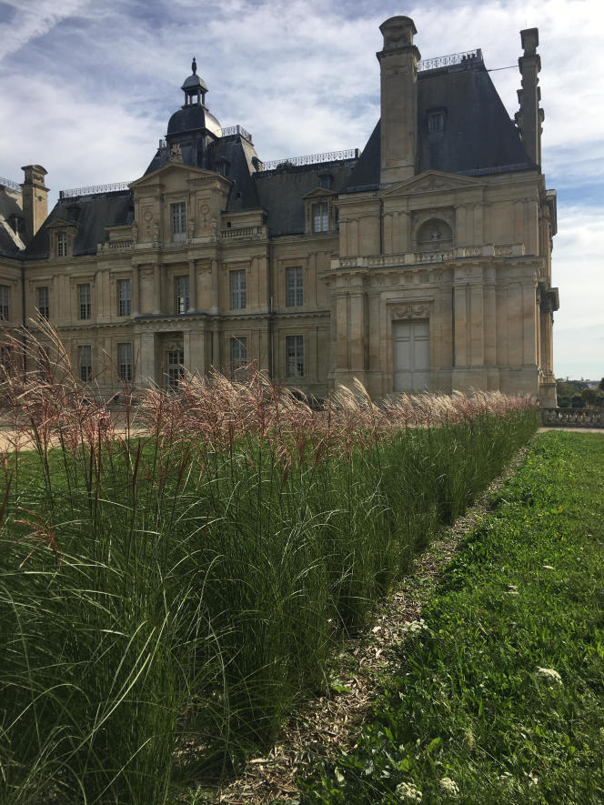 Hedge of ?Miscanthus sinensis?, in the forecourt of the Château de Maisons, in Maisons-Laffitte, in the Yvelines region.